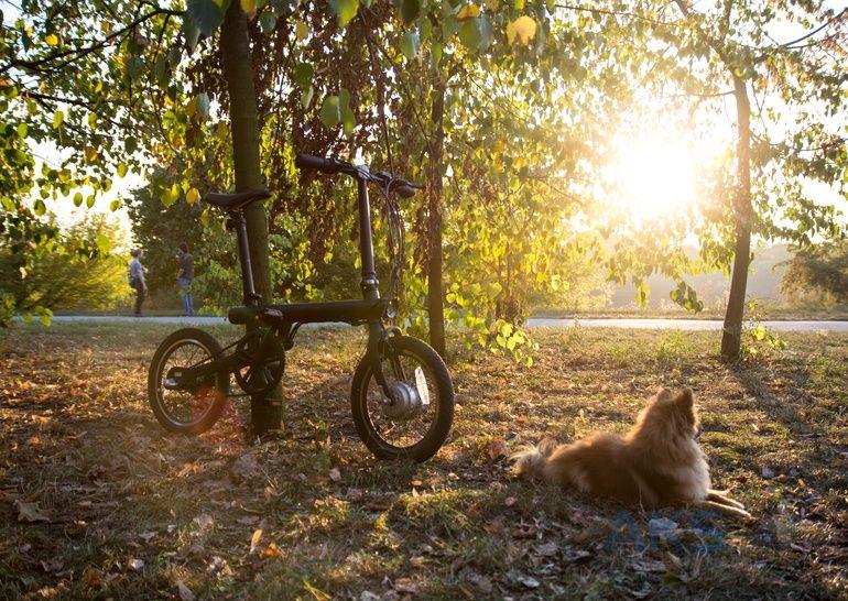 Самокат Xiaomi Mijia Qicycle Folding Electric Bike Ef1