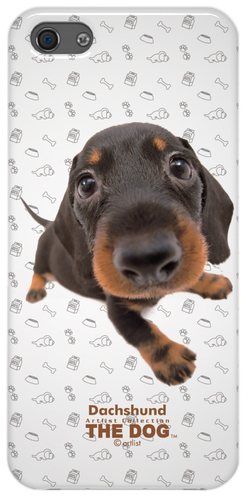 Чехол Qual The Dog Apple iPhone 5, iPhone 5S, iPhone 5SE Dachshund (QL1111DH)