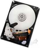 Жесткий диск Hitachi 2TB HUA722020ALA331 (Refurbished)