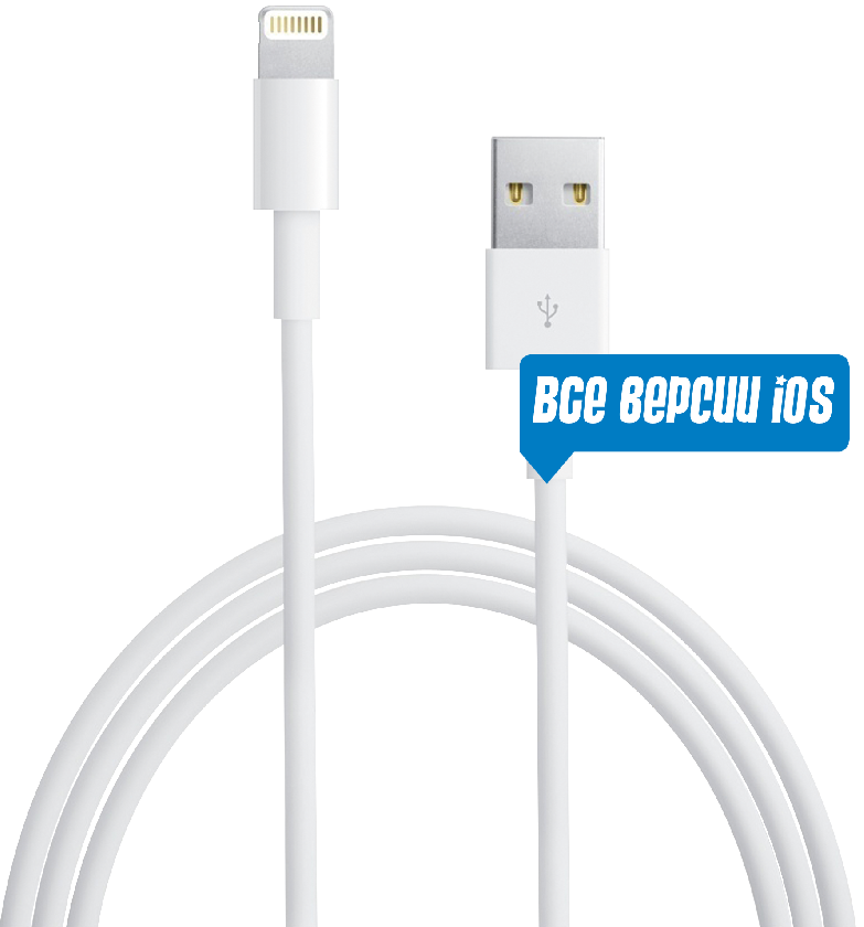 Кабель USB Apple iPhone Lightning to USB 2.0 (MD818) Все версии iOS! White