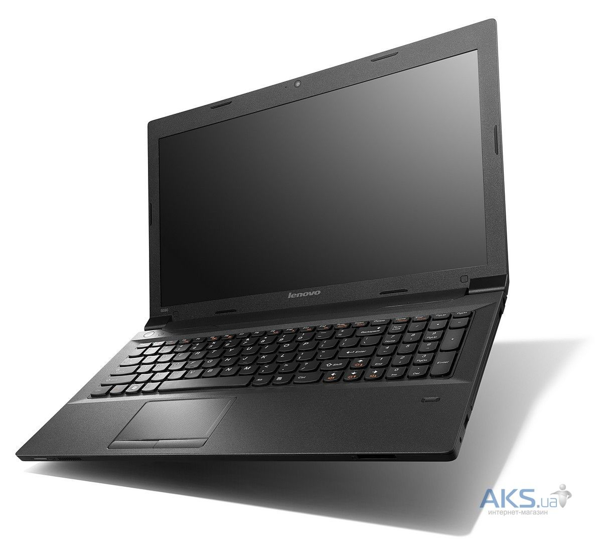 Ноутбук Lenovo IdeaPad B590 (59-392973) Black